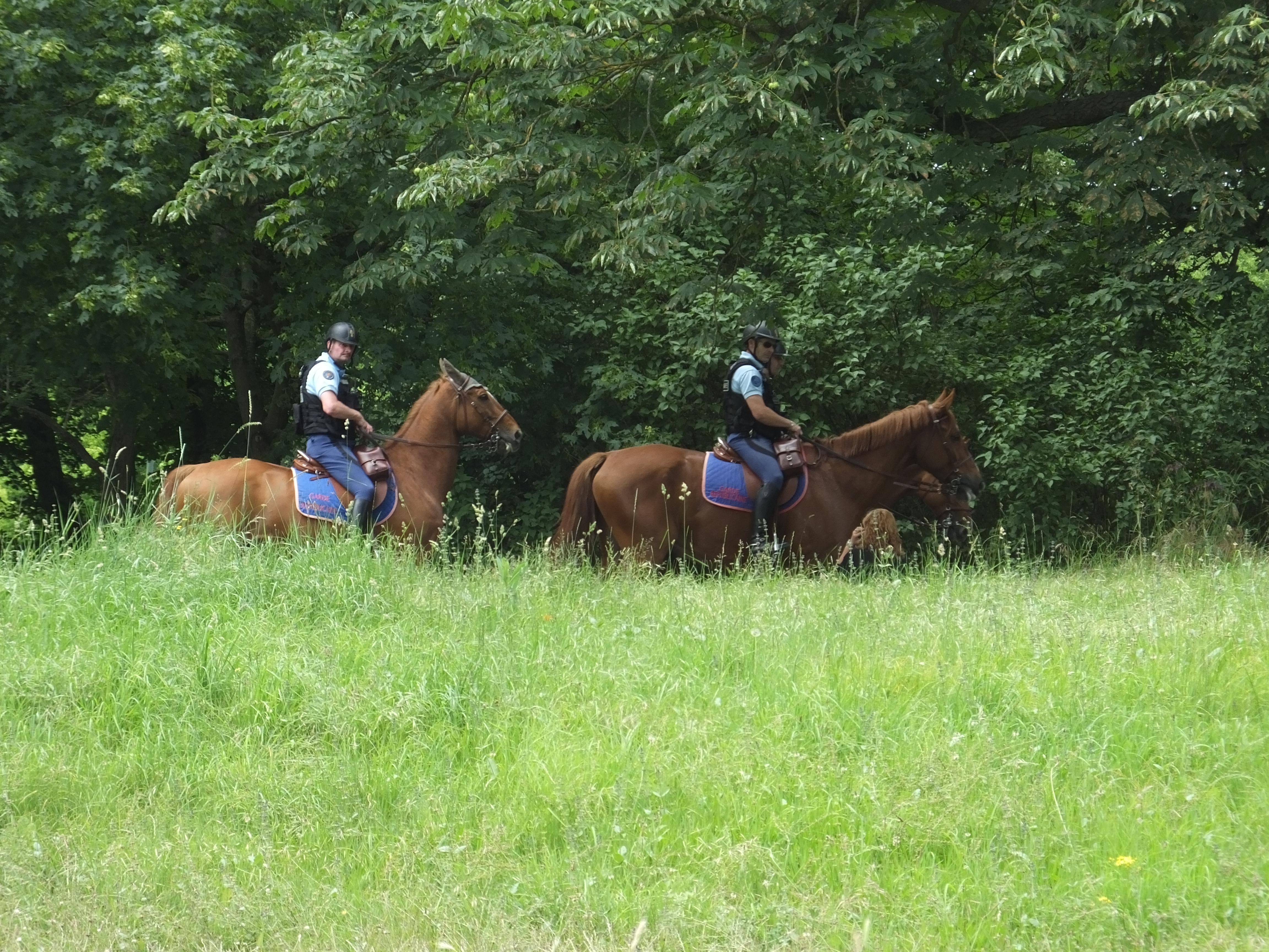 Caught the gendarmes on horseback as we were leaving.